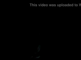 تنزيل فيديوهات حبش جديد